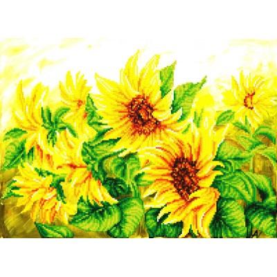 Hazy daze sunflowers